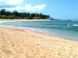 Oceanfront Beach Condo For Rent